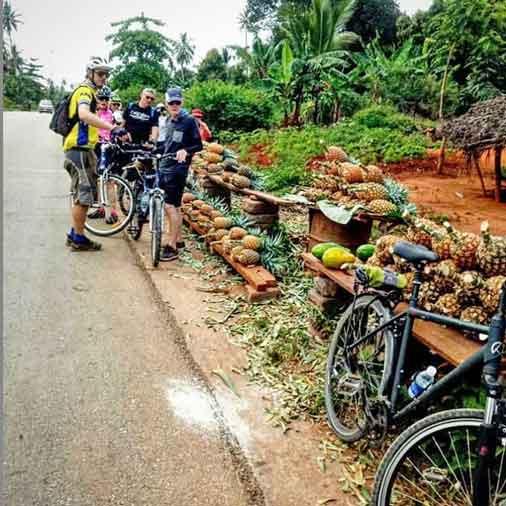 Eating pineapple on the road on a bike holiday on Zanzibar