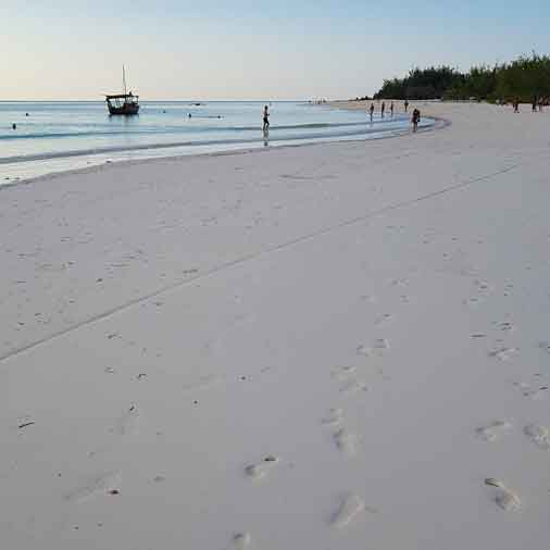 On the 10 days cycling tour you land with the bikes on Michamvi beach after crossing Chwaka bay